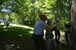 Learning to climb trees