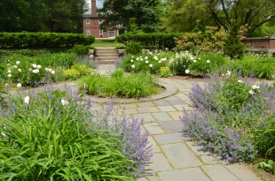 Buttrick Garden at Minute Man