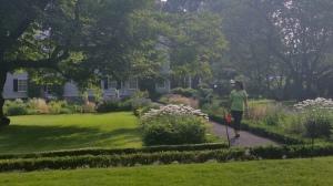 Field Team walking around the garden