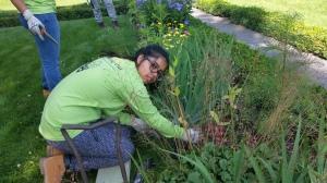 Shreena gardening