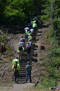 The stairs that the field team repaired during their stay at Peddocks Island